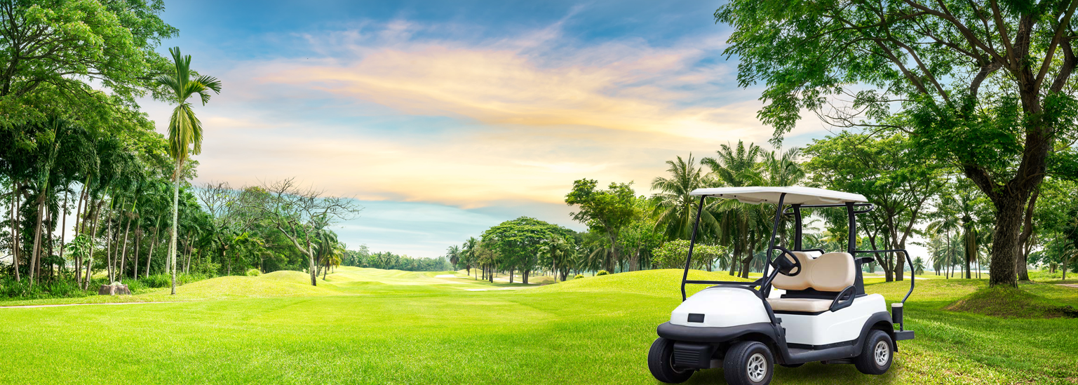 Capistrano Golf Cars Southern California Service Areas on orange golf cart, martini golf cart, lime golf cart, bloody mary golf cart, jessica golf cart, kelly golf cart, taco golf cart, sharon golf cart, daisy golf cart, zombie golf cart, rose golf cart, grasshopper golf cart, paradise golf cart, anna golf cart, lemonade golf cart, eva golf cart,